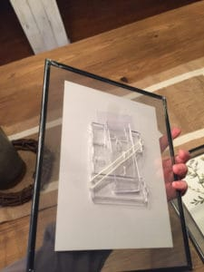 The frame for the botanical prints