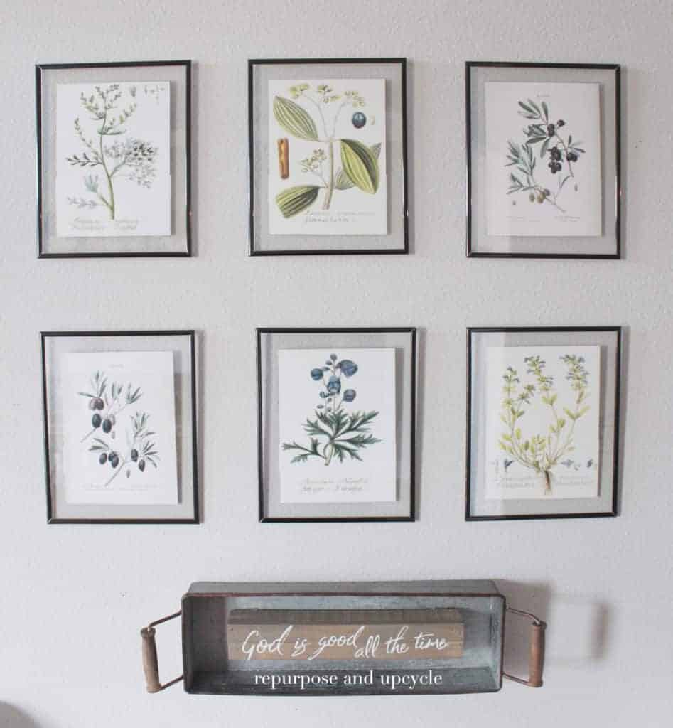 Diy framed botanical prints with free botanical printables