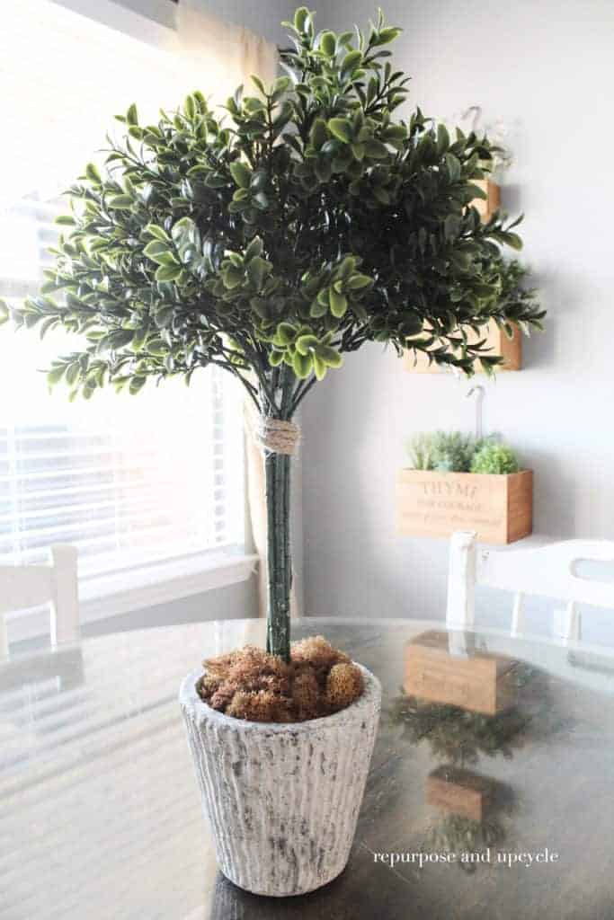 DIY Topiary Trees with Boxwood Sprays