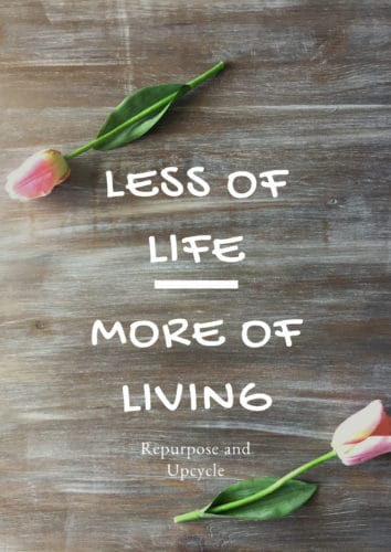 Less of life and more of living
