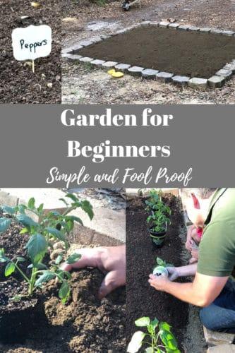 garden for beginners