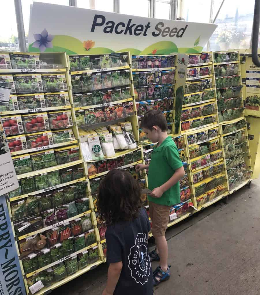 picking out seeds for garden