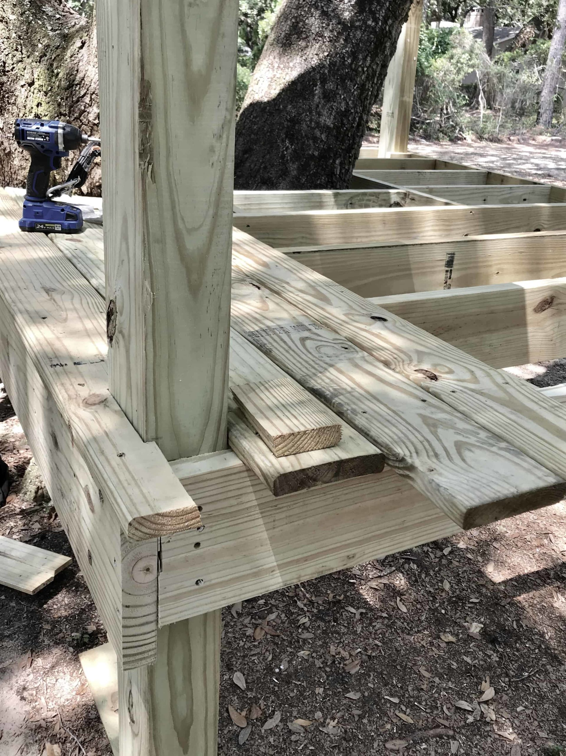 framing the top of the platform tree house