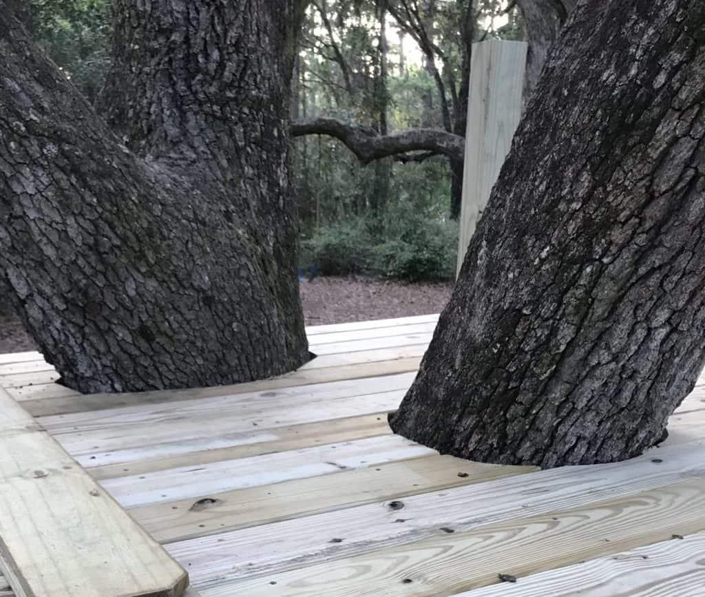 adding boards around the tree