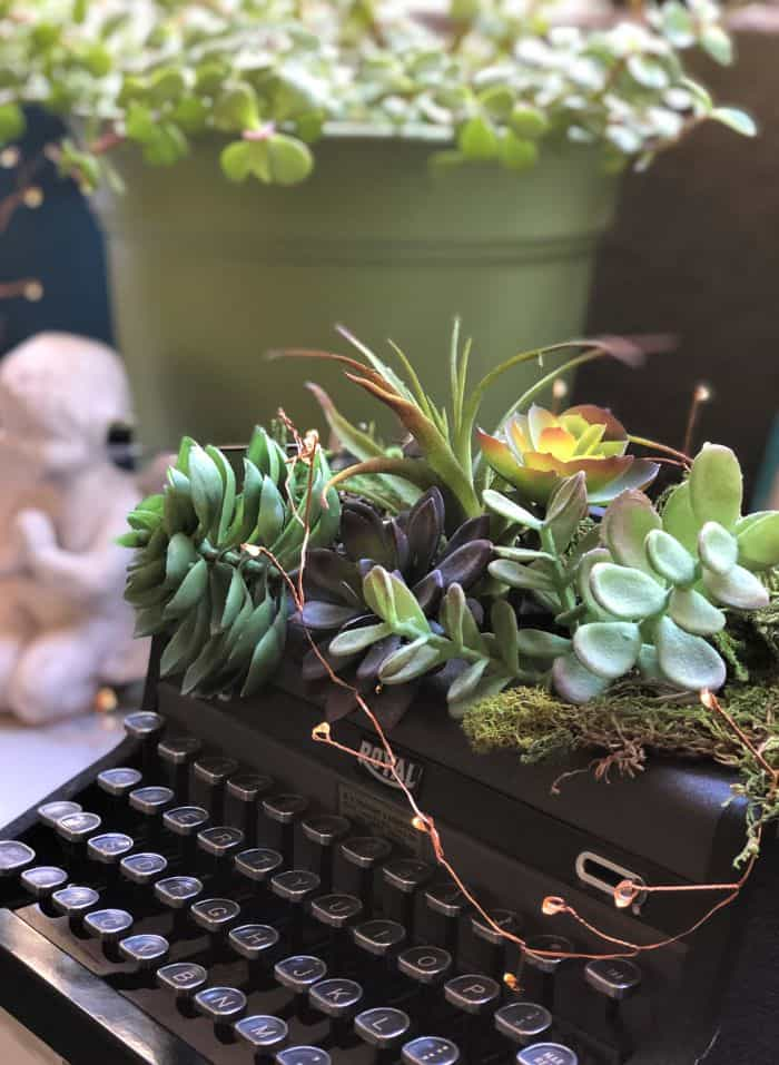 Garden Typewriter Decorated with Succulents and Moss
