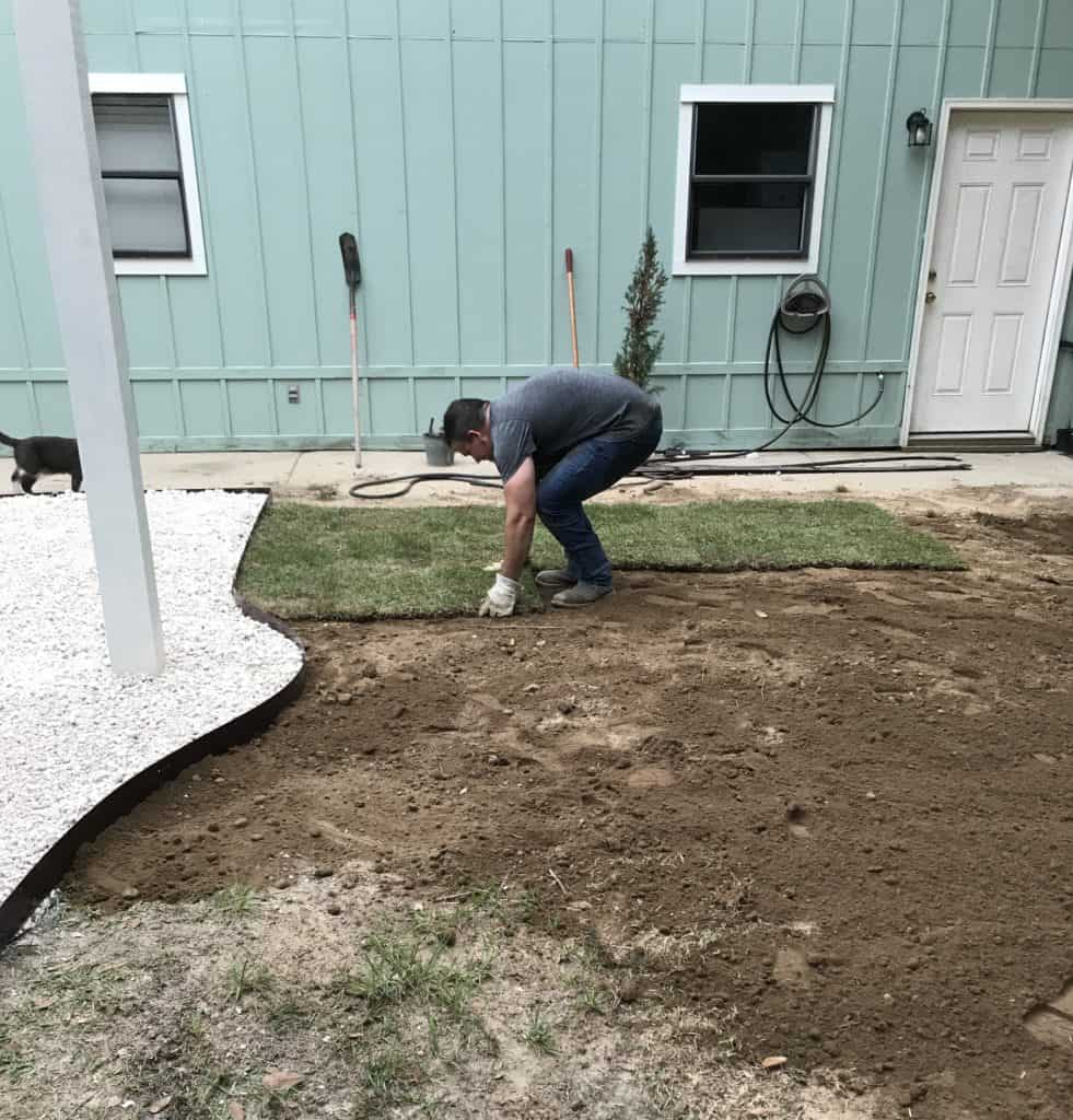 laying the sod