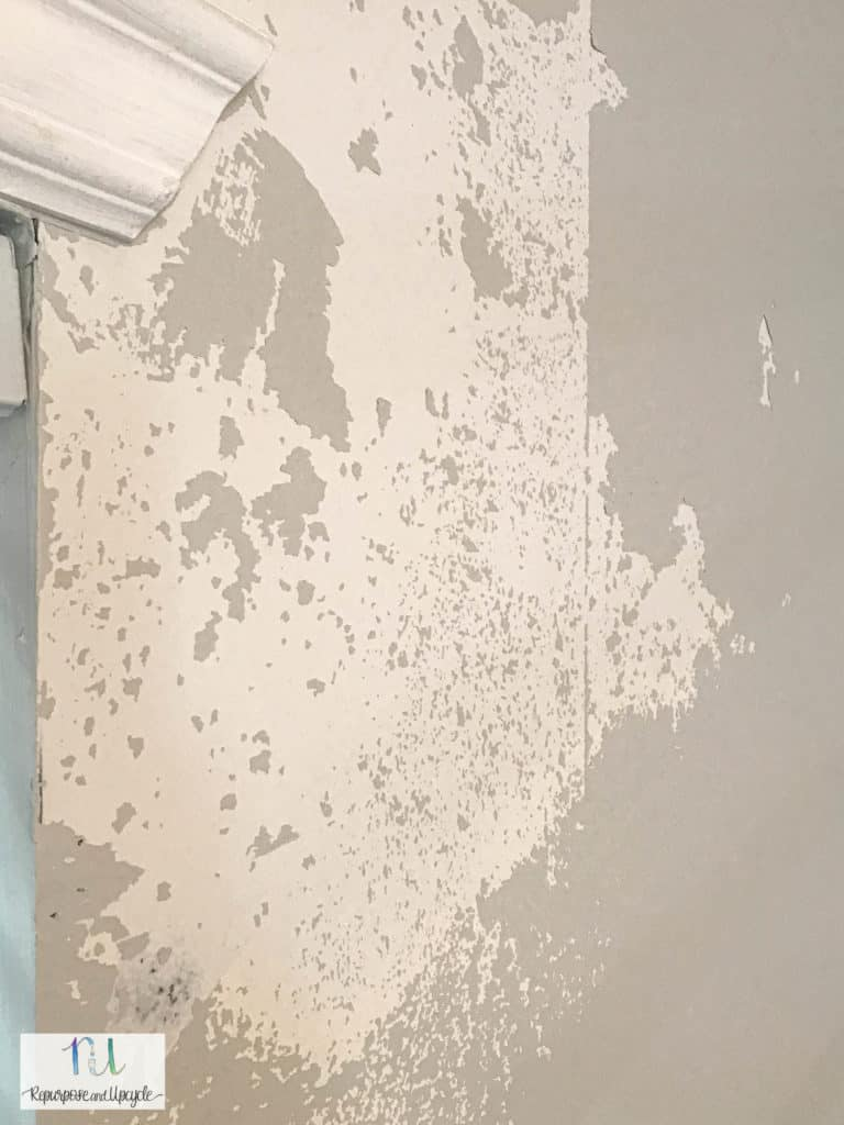 paint peeled after removing wallpaper