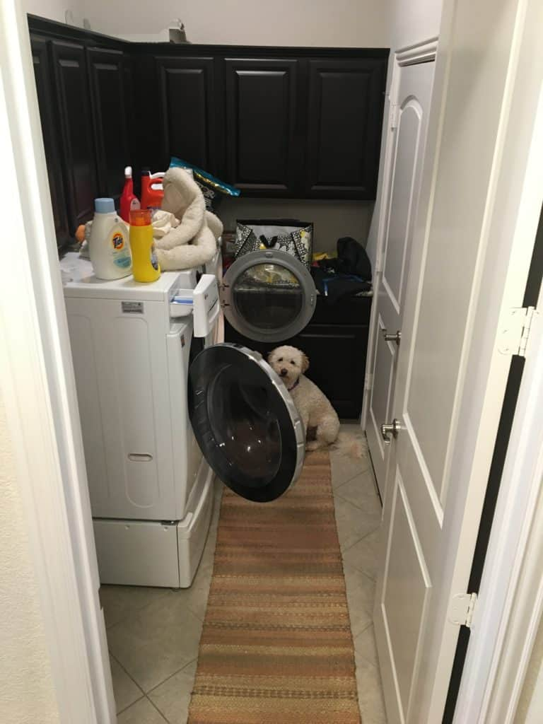 laundry room renovation before