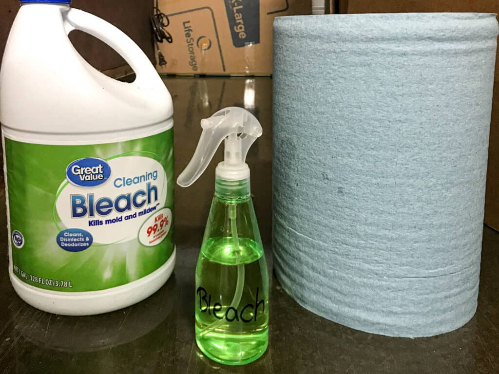 mold cleaning solution with bleach and water