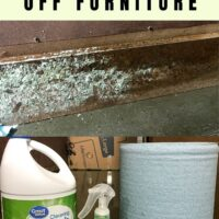 how to clean mold off furniture