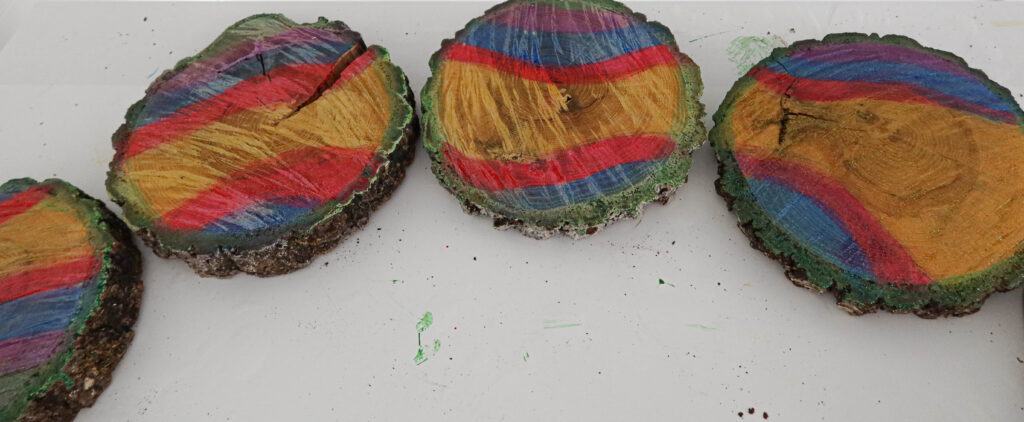 painted tree slices